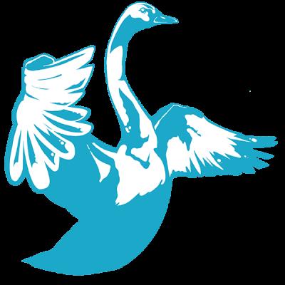 Suomi Sujuu logo